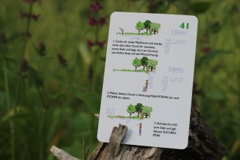 Dummy-Karten-Set Nr. 2 von Gitte Kuther
