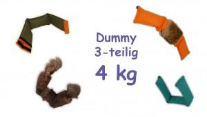 Dummy 3-teilig 4 kg