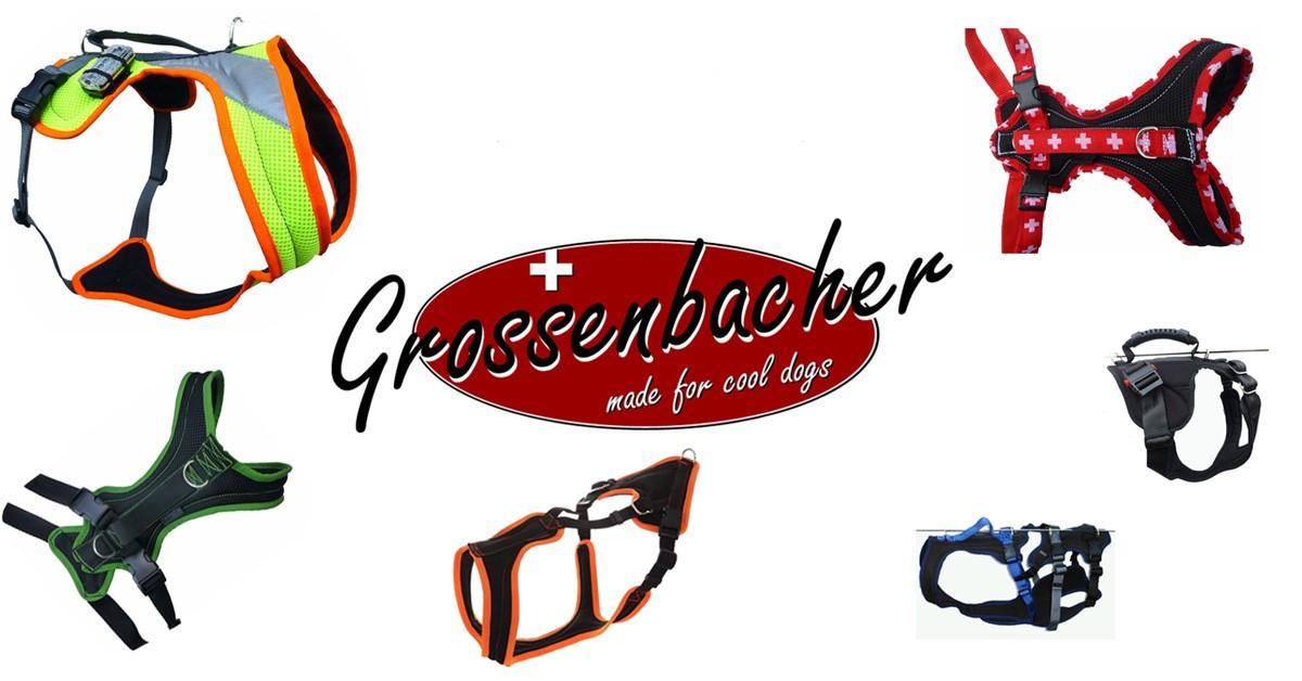 Grossenbacher Reduzierte Vorführ-Geschirre, vom Umtausch ausgeschlossen
